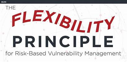 Vulnerability Principle Management Flexibility Solution Northstar Conventus