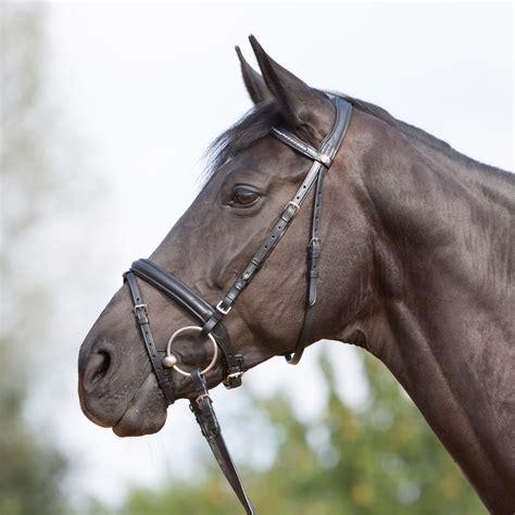 kieffer ultrasoft bridle snaffle bridles halter headband beaded riding neck english tara