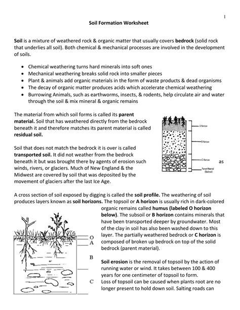 worksheet soil worksheets grass fedjp worksheet study site