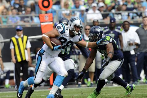panthers  seahawks   review cat scratch reader
