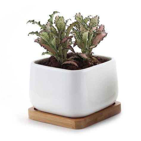 vasi piante sottovaso in ceramica per piante grasse