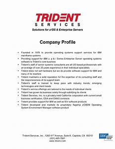 trident company profile With company portfolio template doc
