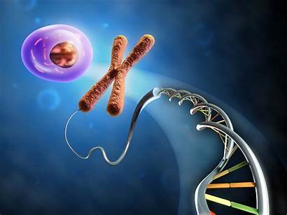 Dna Molecule Structure Genetic Pattern Psychedelic Abstraction