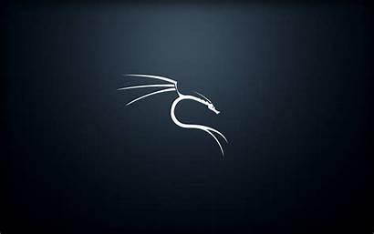 Kali Linux Wallpapers Ffwallpaper Phone