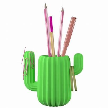 Pencil Holder Cactus Magnetic Plastic Pylones Pvc
