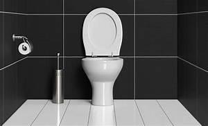 Déboucher Les Toilettes : toilettes pas cher ~ Melissatoandfro.com Idées de Décoration