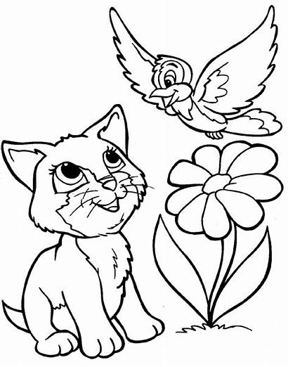 Coloring Animals Pages Animal Colouring Printable Bird