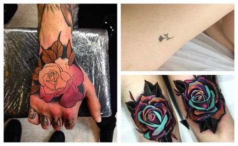 Significado De Tattoo De Rosas Negras MMOD