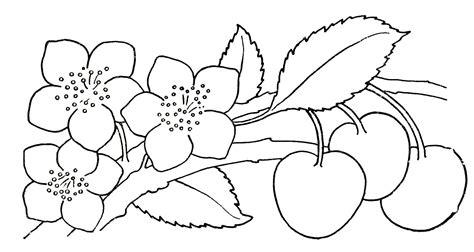 flowers drawing  kids   clip art