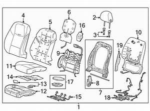 Cadillac Cts Power Seat Wiring Harness  W  O Cts V  W  O