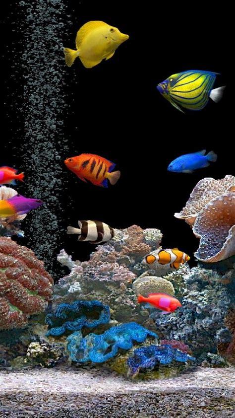 Animated Aquarium Wallpaper For Windows 7 Free - live aquarium desktop wallpapers for windows 7 free