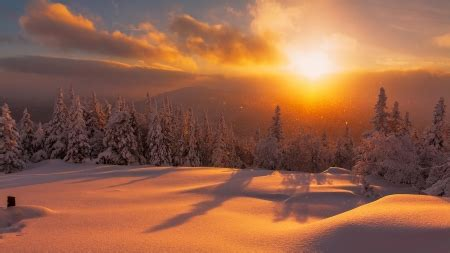 winter fire winter nature background wallpapers