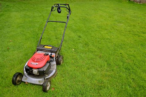 Which Lawn Mower Is The Best Buy?