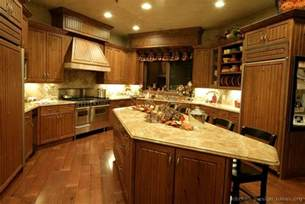 classic kitchen ideas pictures of kitchens traditional medium wood golden brown kitchen 12