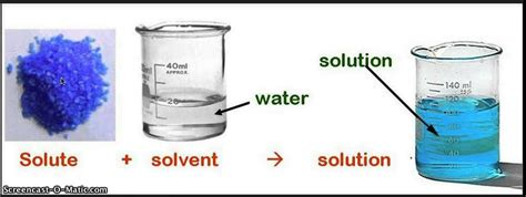 how do solutes and solvents interact socratic
