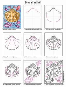 How To Draw A Sea Shell
