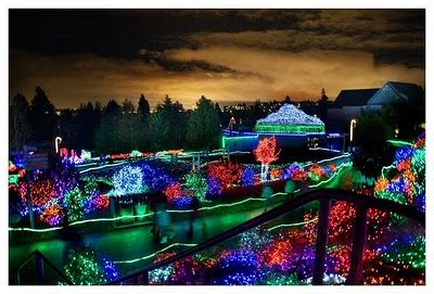 Zoo Lights Point Defiance by Point Definace Zoo Lights