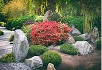zen garden plants Best Bamboo Plants for Japanese Zen Gardens - Lewis Bamboo