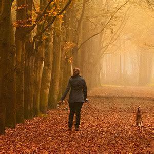 mindful walking  sharon salzberg mindfulness exercises