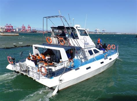 Boat Cruise In Durban For A Day durban day tours south africa durban safaris and durban tours
