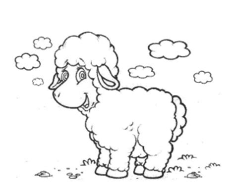 sheep coloring pages for preschool preschool and 183   sheep coloring pages for preschool free printable colouring 300x242