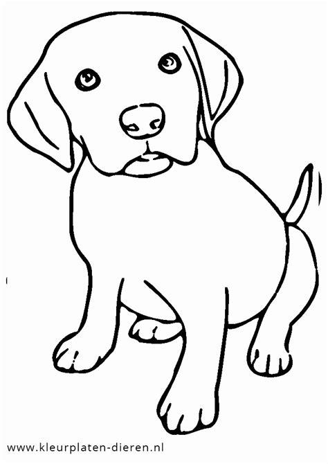 Kleurplaat Printen Puppie by Honden Kleurplaat Puppy Kleurplaten