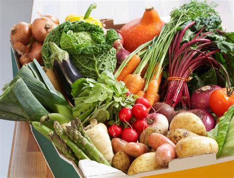 cuisiner bio plusieurs astuces pour cuisiner bio tous les jours