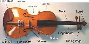 Buying Guide  How To Choose The Right Violin