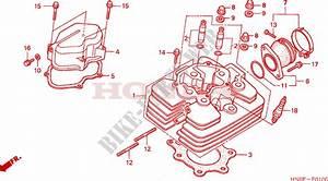 2002 Honda Foreman 450 Parts Diagram