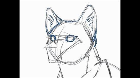 draw  cat tutorial youtube