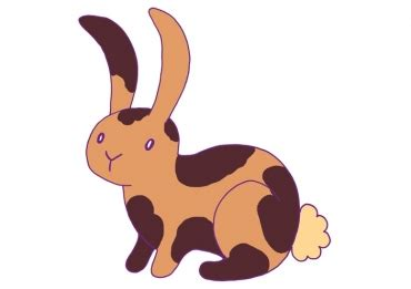 comment dessine t on 3 6 ans un lapin