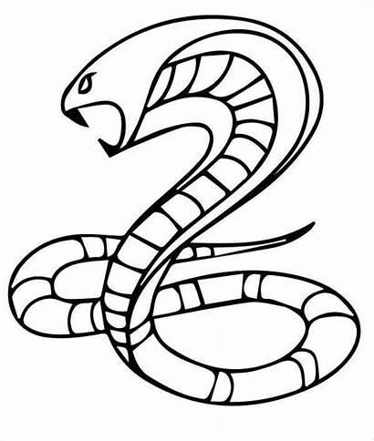 Snake Cobra Coloring Pages King Templates Rattlesnake