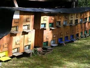 Bienenhaus Selber Bauen : bienenstock ~ Lizthompson.info Haus und Dekorationen