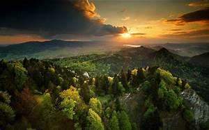 Nature, Landscape, Spring, Sunset, Forest, Sky, Mountain