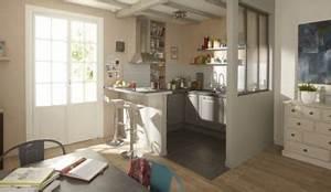 Peinture Spéciale Cuisine : une peinture grise sp ciale cuisine pour les meubles ~ Melissatoandfro.com Idées de Décoration
