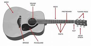 The Acoustic Guitar Step By Step Buying Guide