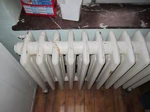 Mon Radiateur Ne Chauffe Pas : mon radiateur ne fonctionne pas ~ Mglfilm.com Idées de Décoration