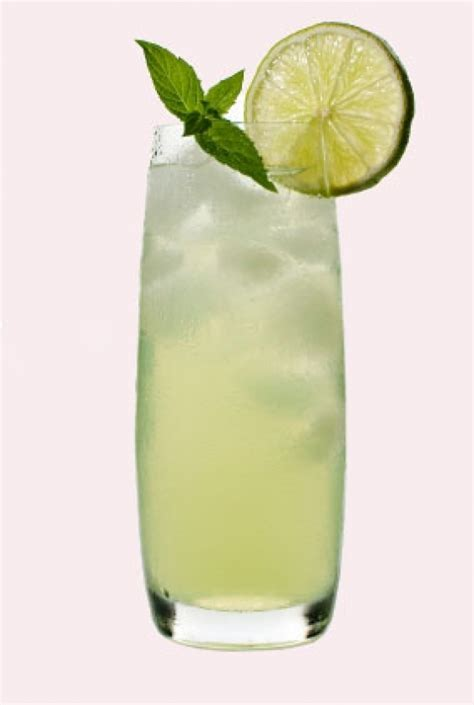 gin cocktail gin fizz long drink long drinks