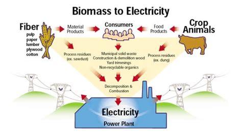 Biomass Faq