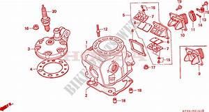 Cylinder Cylinder Head For Honda Cr 250 1992   Honda Motorcycles  U0026 Atvs Genuine Spare Parts Catalog