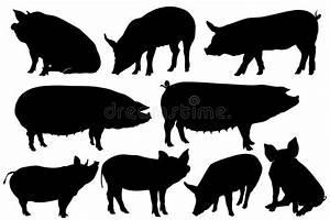Pork Stock Illustrations  U2013 43 753 Pork Stock Illustrations
