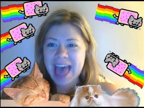 hug  cat songify   song  loving