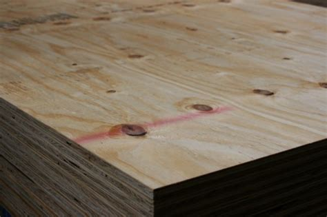 cdx plywood rise miami news