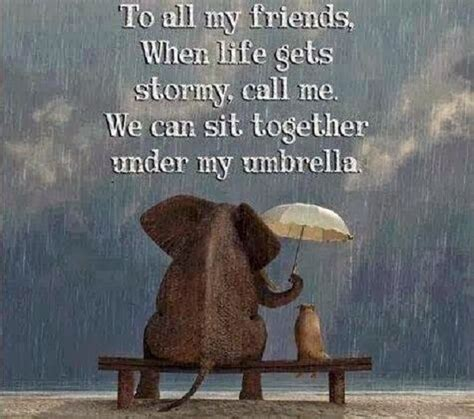 friends  life  stormy call