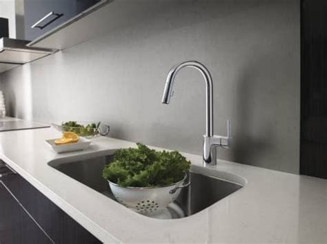 Moen 7565EC Single Handle Kitchen Pull Down Faucet with 2