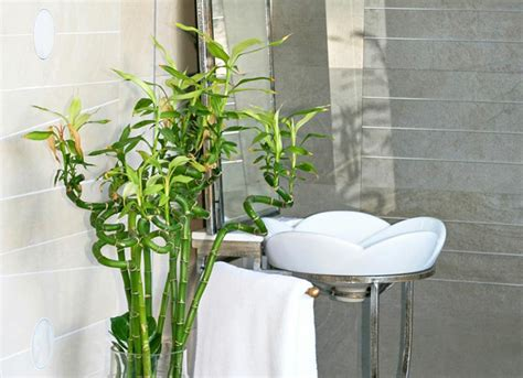 17 Bathroom Trends For 2018 And 3 On The Way Out