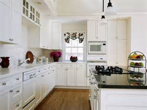 cabinets kitchen ideas glamorous white kitchen cabinets remodel ideas with molded panel mykitcheninterior