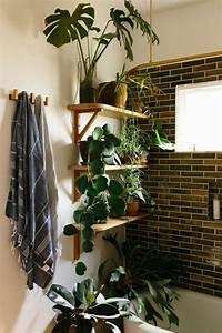 Plante Intérieur Grimpante : les 1728 meilleures images du tableau salle de bain sur pinterest ~ Louise-bijoux.com Idées de Décoration