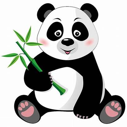 Panda Hungry Google Eats Bamboo