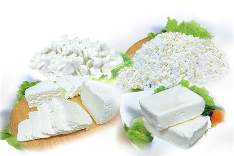 non dairy cottage cheese soft non maturing fresh cheese